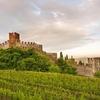 Виноградники Соаве признаны сельскохозяйственным наследием человечества