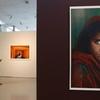 Венария Реале: выставка работ Стива МакКарри привлекла более 170.000 посетителей