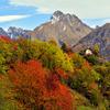Валле-д'Аоста приглашает туристов открыть для себя все прелести осени