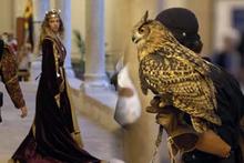 Путешествие в средневековье среди отважных рыцарей и предприимчивых купцов