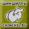 Изображение пользователя chinchil.