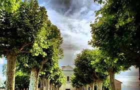 Нарцоле - живописнейший городок среди зеленых холмов и ароматных виноградников