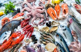 Как распознать свежие и качественные морепродукты: гид от итальянского шеф-повар