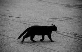 Происхождение и смысл суеверий коренных итальянцев