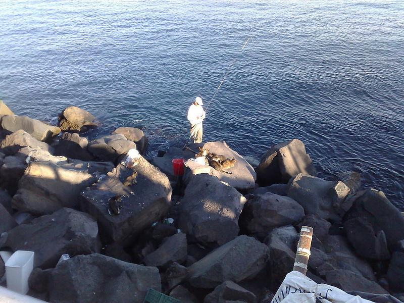 В ожидании улова
