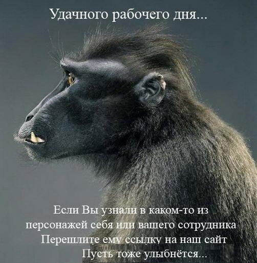 Офис в лицах)))