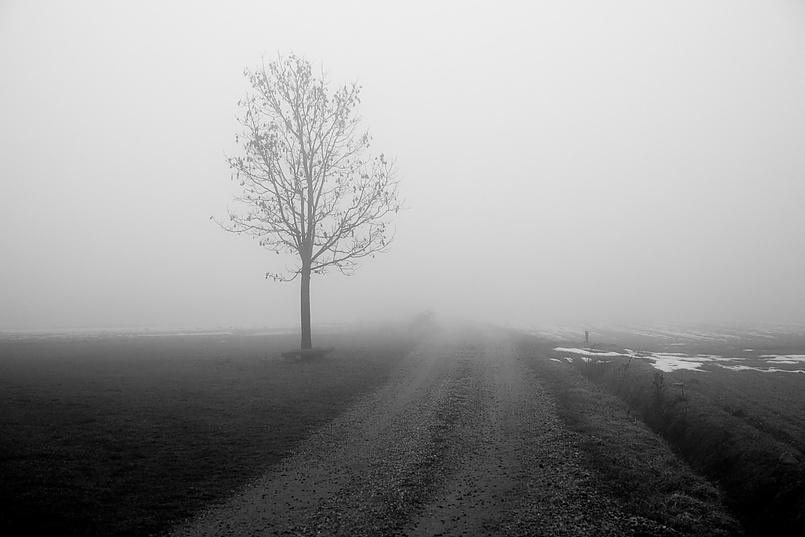 Туманное зимнее утро