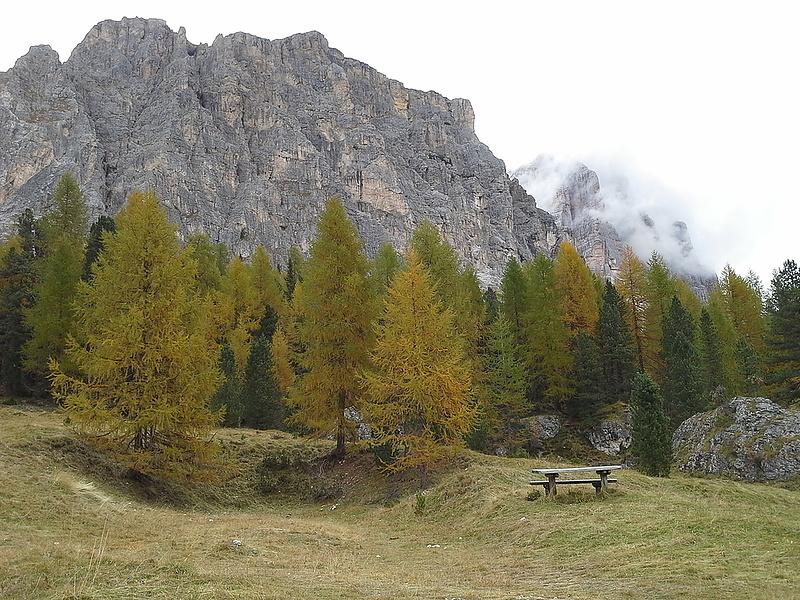 Oсенние пейзажи  Cortina