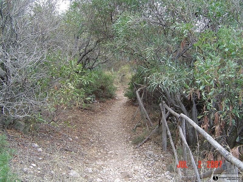 Citta del Mare прямо ботанический сад