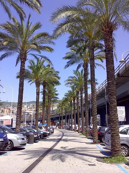 Parcheggio Centro storico di Genova.