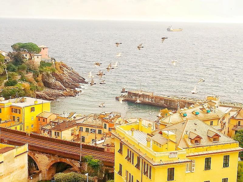 Genova, Nervi