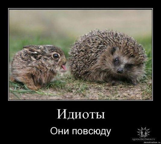 В мире животных всё бывает,как у людей ))))