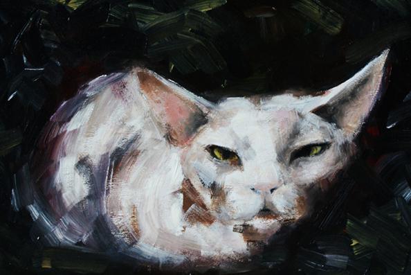 Кот. Масло на доске.