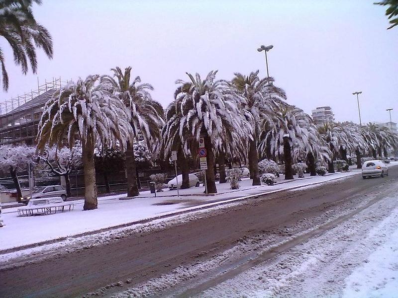 Зима в Джулианове