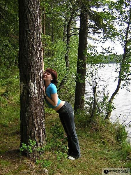 Деревья - моя слабость