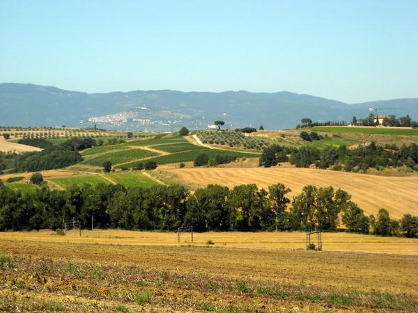 Моя Тоскана