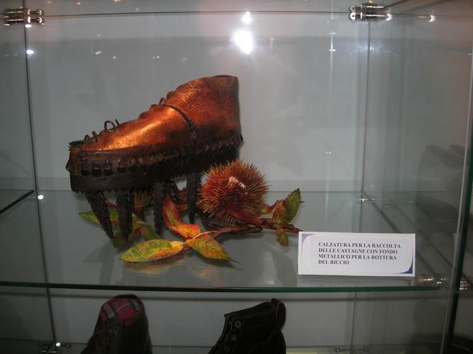 а как вам такая обувка?