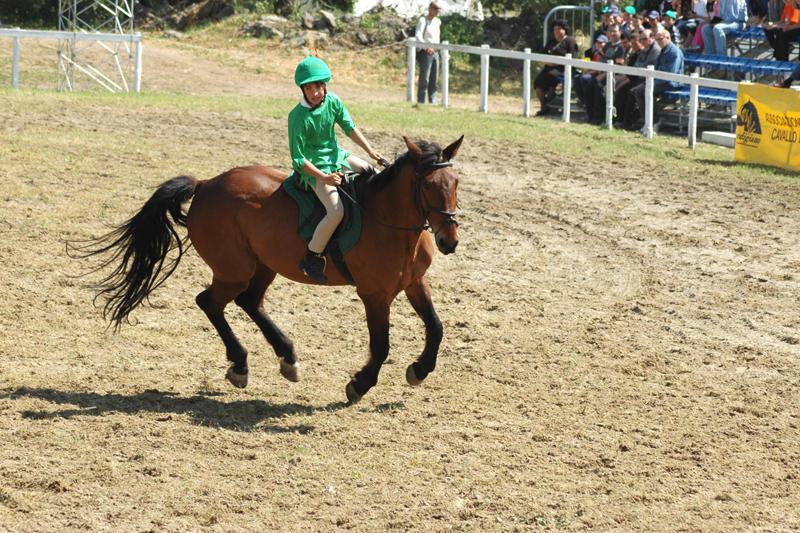 Мы артисты:конь и я!