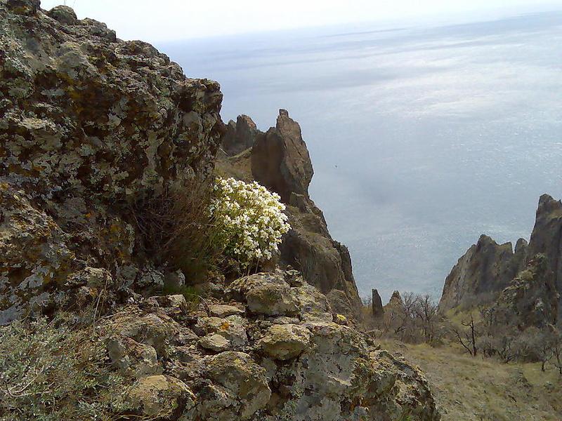 А это Карадаг ранней весной