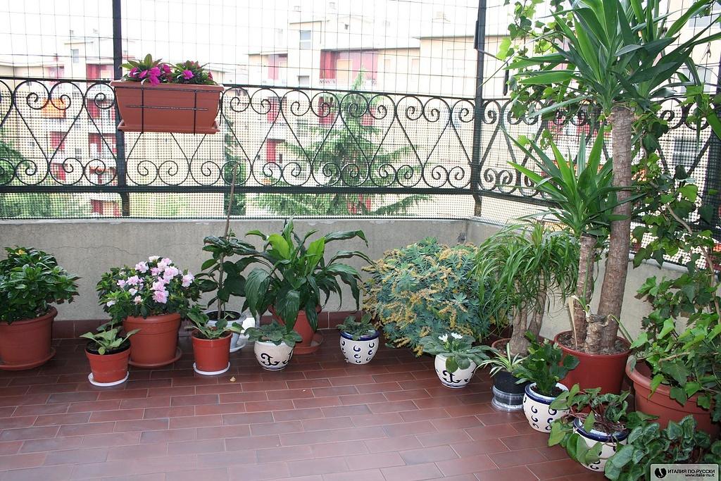 Мой балкончик ;) - фото италия.