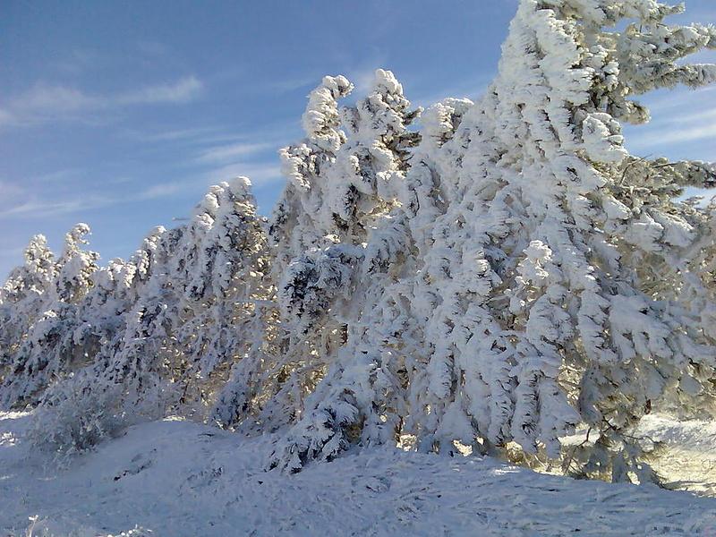 Зима в Крым тоже заглядывает...