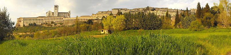 Assisi (вид снизу)