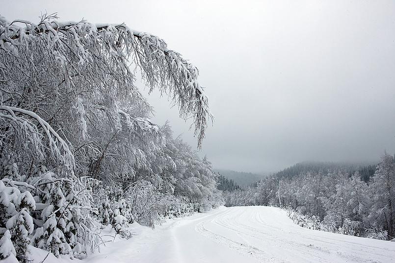 А у нас первый снег
