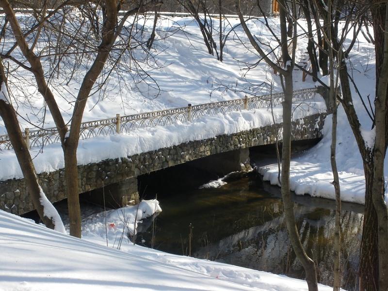 Фото и стихи. Февраль- конец зимы