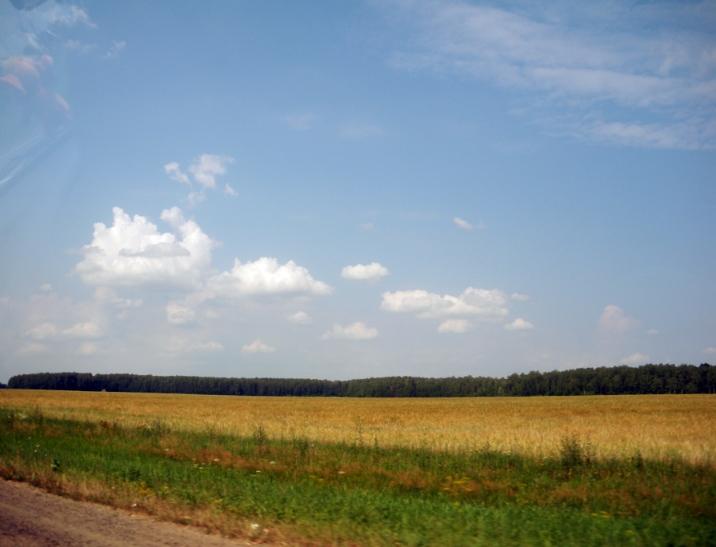 Пейзаж в дороге