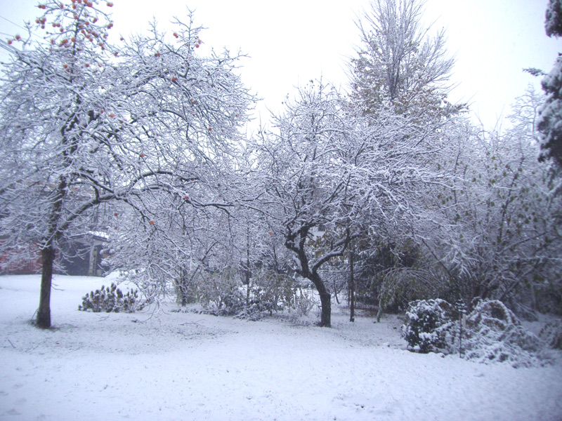 ураааа снег!