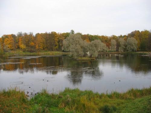 Гатчинский пруд