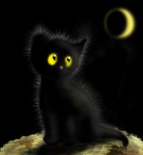 Песня черный кот за углом