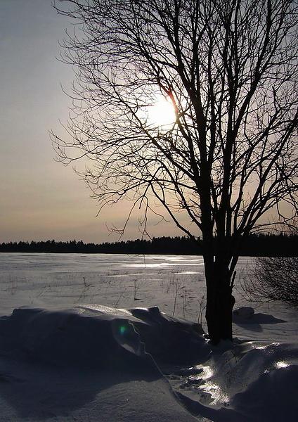 Зимой у Звенигорода