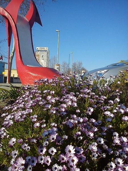 Туфля и цветы