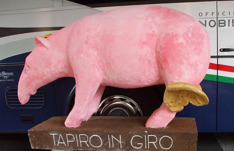 Тапиро собственной персоной ;)
