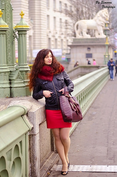Красотка  на Васмейстерском мосту .