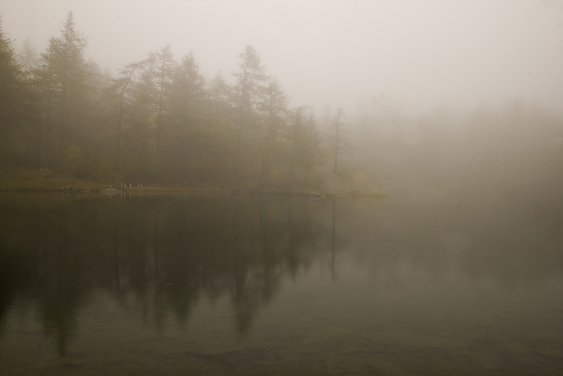 В тумане 2