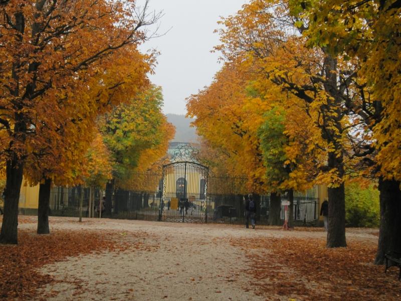 Австрийская осень. Шёнбрунн