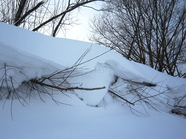 А вот такой снег вы видели?