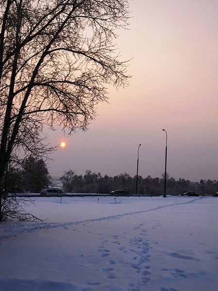 Солнце последнего дня 2010 года
