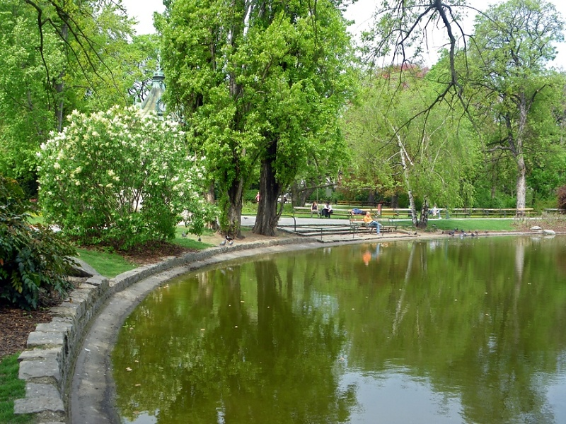 Вена.В городском саду