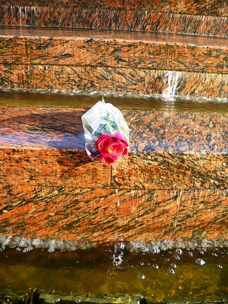 Не пришла...,или Розы в фонтане