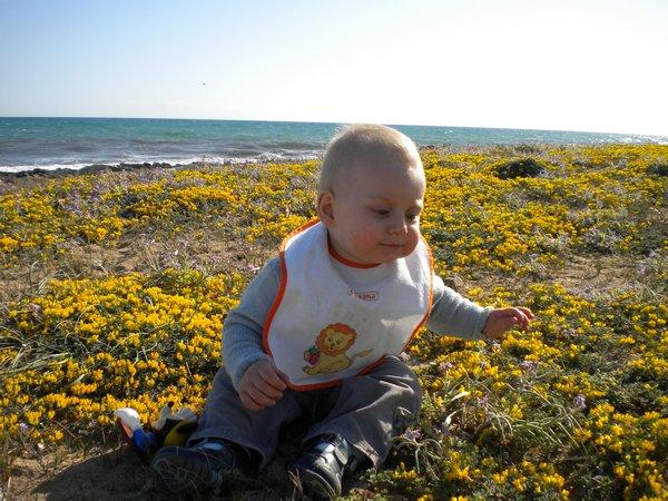 Сегодня: море, Лео и цветы