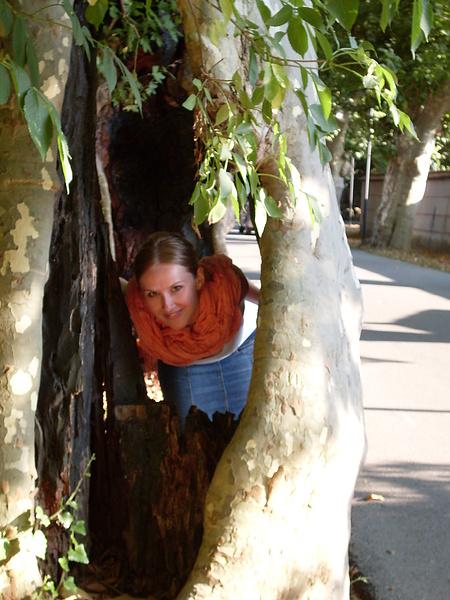 сказочные деревья Кераско
