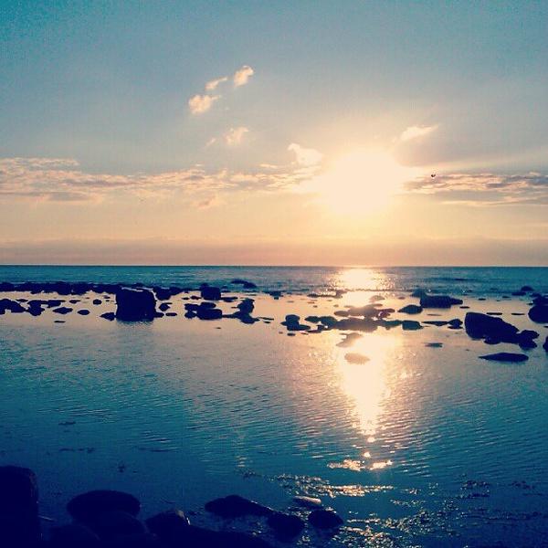 Косочек Балтийского моря и его сокровищ:-)