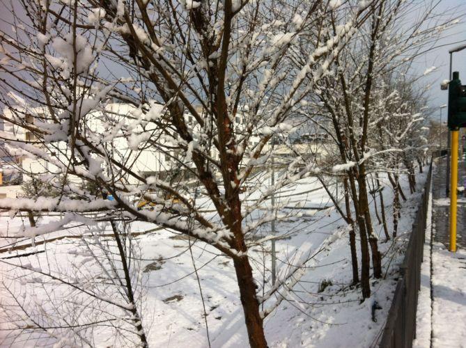 Погода в ояше мошковского района новосибирской области