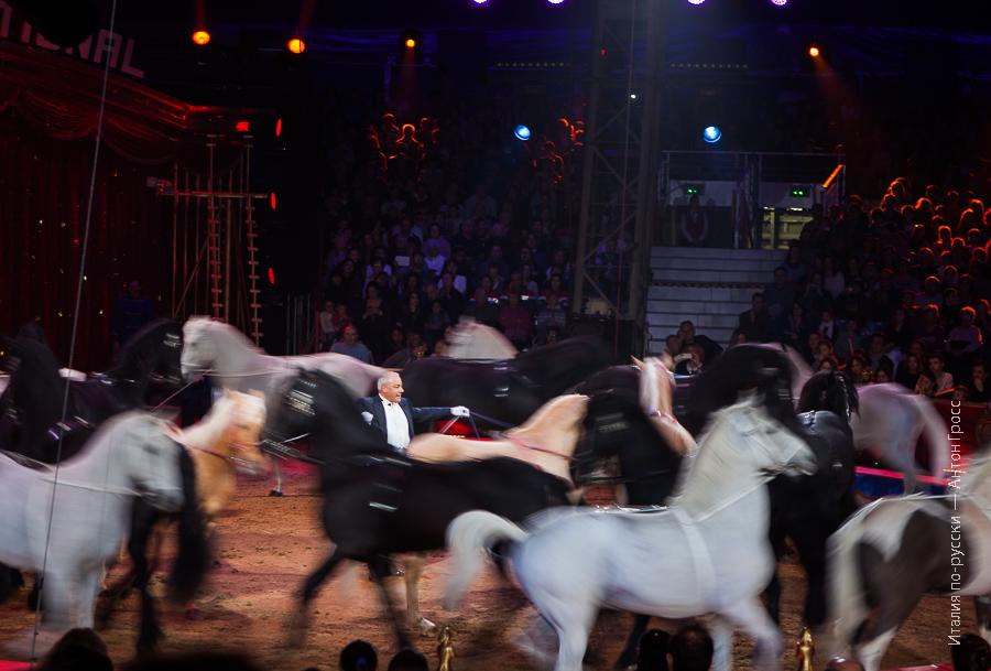 38-ой Международный Фестиваль Циркового искусства в Монте-Карло