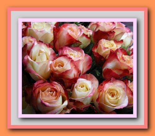 Цветы для любы открытка 1