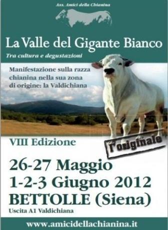http://italia-ru.com/files/la_valle_del_gigante-amicidellachianina_it.jpg