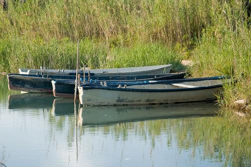 Основной промысел на озере Лезина - разведение угрей